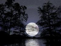 gambar: anekaremaja.com